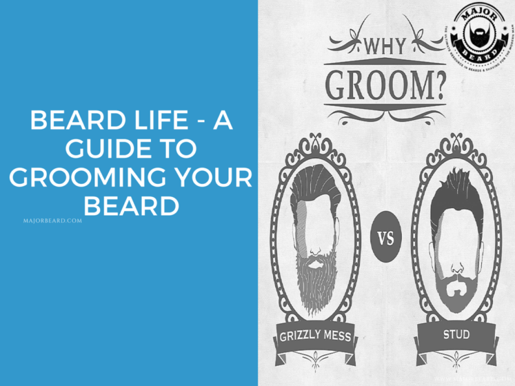 Beard Life - A guide to grooming your beard